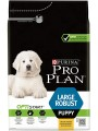 PRO PLAN LARGE PUPPY ROBUST 12kg hrana za pse